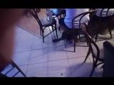 событие вечера в клубе Алиби. поэты и критики. поэтесса Наталья Атрохова