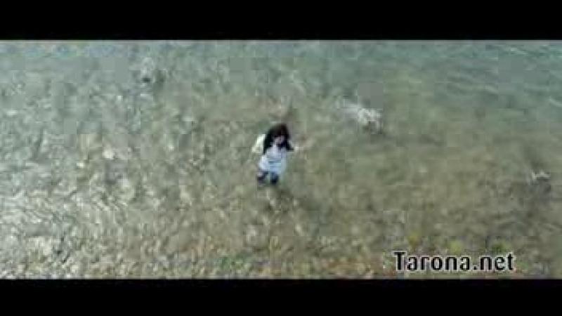 Tarona net