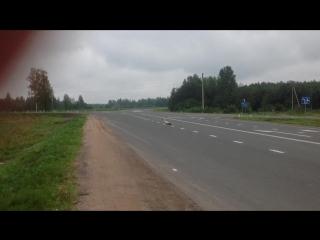 Аист на трассе к Пскову