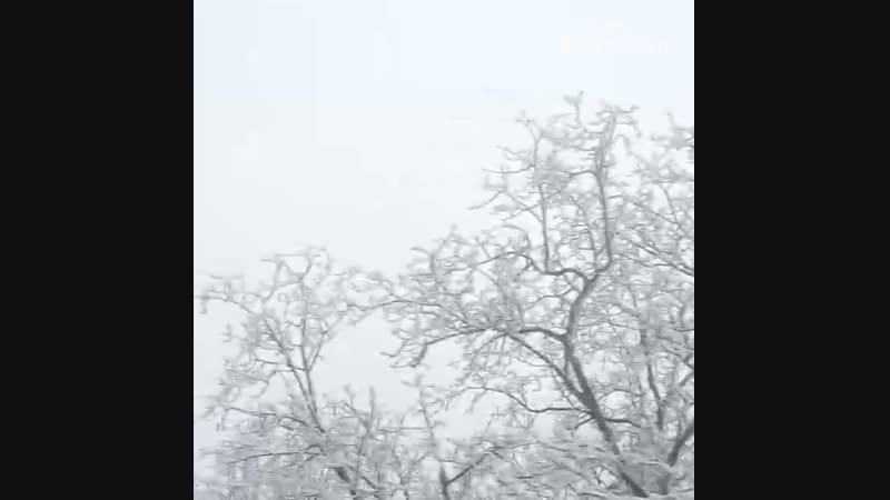 Ранневесенняя изморозь в провинции Хубэй