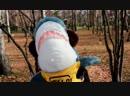 Приключения акулы из IKEA 😉