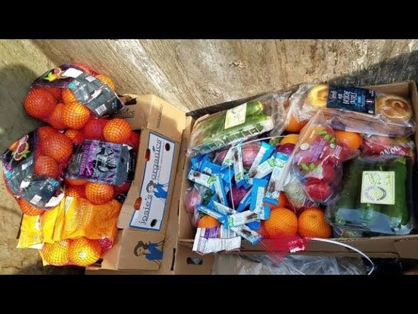 DUMPSTER DIVING ALDI DAILY VIDEO 46