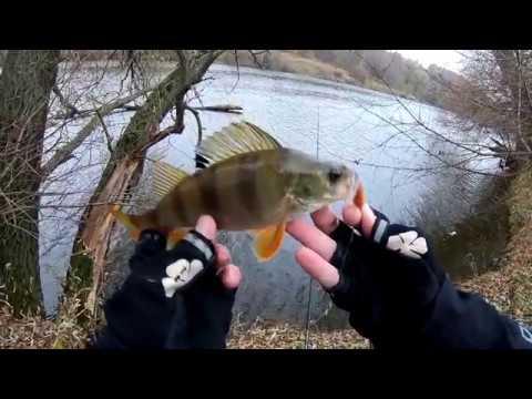 Эксперементальная рыбалка, ловля окуня на форелевую резину микроджигом! Москва-река люто раздает..