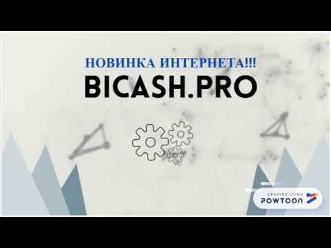BICASH PRO МАРКЕТИНГ ПРЕЗЕНТАЦИЯ ПРОСТО ОГРОМНЫЙ ДОХОД БОЛЕЕ 15000$