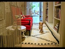 At Home with Dogs and Their Designers with Jonathan Adler