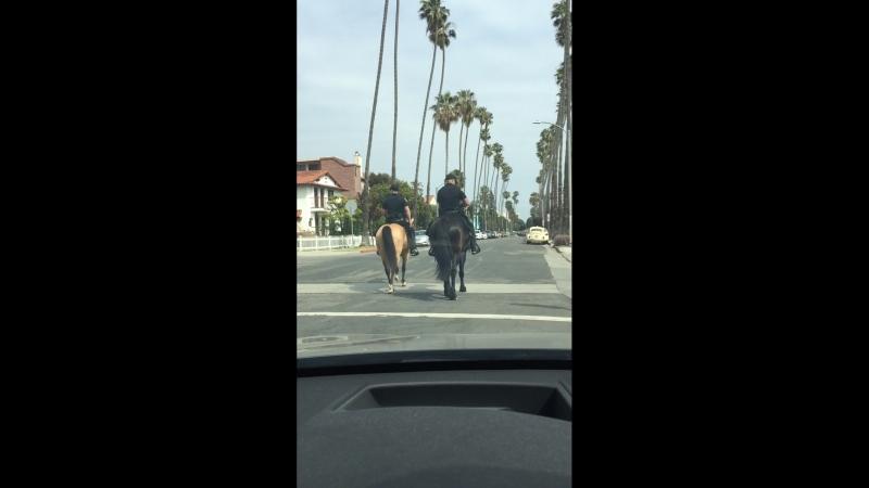 Конная полиция в Санта Монике