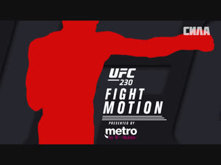 UFC 230 Fight Motion