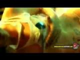 Jaylib feat. Frank-N-Dank - McNasty Filth