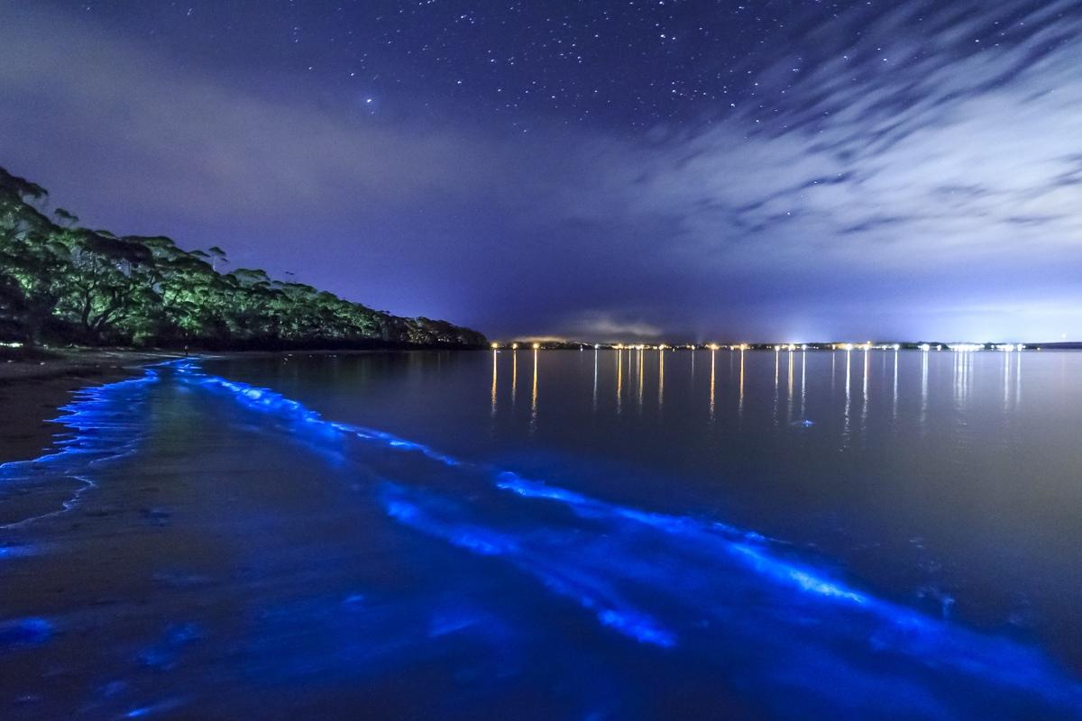 Фотограф Энди Хатчинсон сияние моря молочное море свечение моря