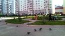 Чистые Пруды г Киров Июль 2012