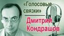 Дмитрий Кондрашов Голосовые связки