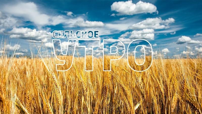 Заставка программы «Сельское Утро» (13.06.2015 - 30.04.2016)