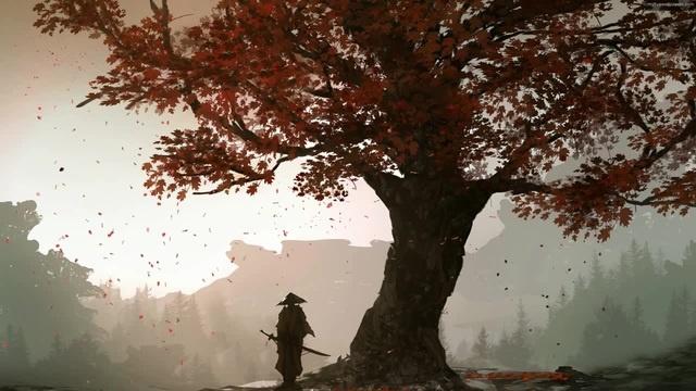 Lonely Warrior · coub, коуб