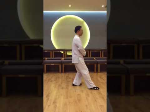 10 shi hou tui shi в исполнении Мастера Ван Лина вид сбоку
