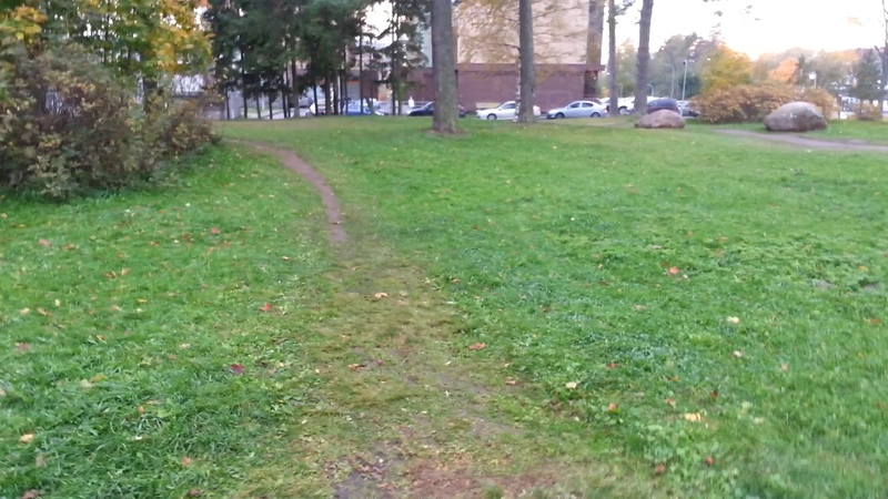 Тринадцатое октября А трава газона изумрудная