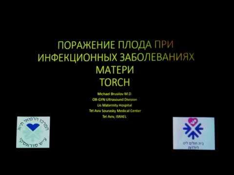 Поражение плода при инфекционных заболеваниях матери TORCH