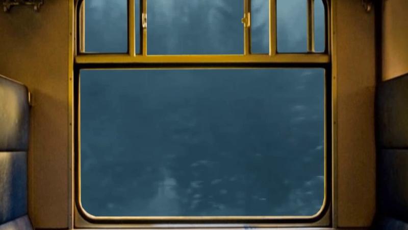 Футаж в вагоне поезда в купе за окном мелькают деревья