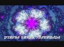 О ведическом тексте Дхиянабину Упанишада Преподаватель Елена Бодха