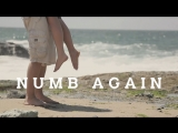 Radu & White Lynx - Numb Again (Asher Remix)