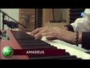Miloš Biháry Jazz Funk Brothers -,,Amadeus (arr. by Miloš Biháry)