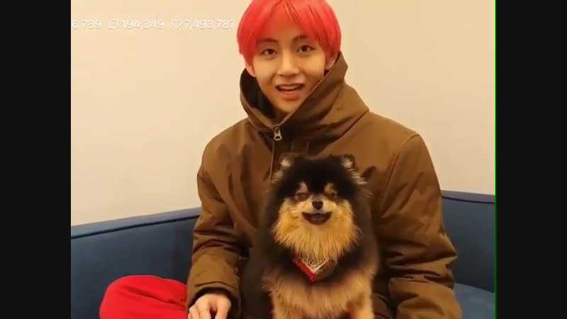 Yeontan stood there and observed the camera while blinking softly then he directly went to