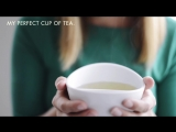 The_awarded_Magisso_Teacup_-_New_4_pastel_colors
