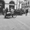Seledka_bez_shuby video