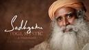СадхГуру о Смысле жизни Важное в жизни, приоритеты. Зацикленность людей. ॐ