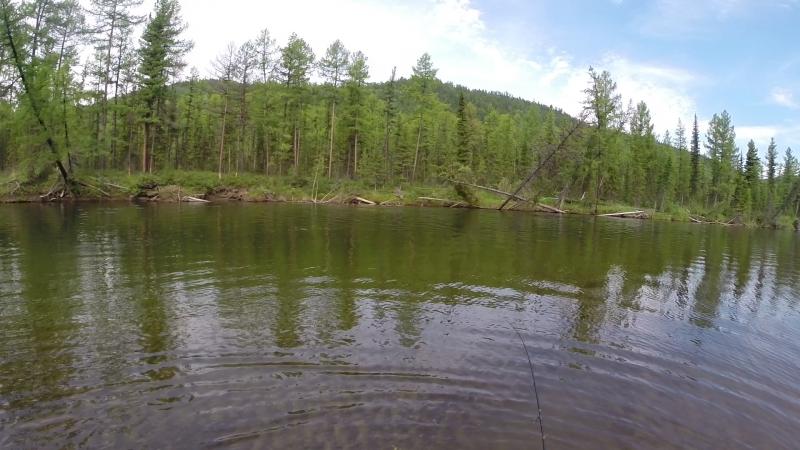 Рыбалка на ленка Река Чаваш респ Тува 2015 июль
