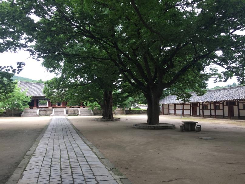 Отчет о путешествии в Северную Корею 2018. Территория университета