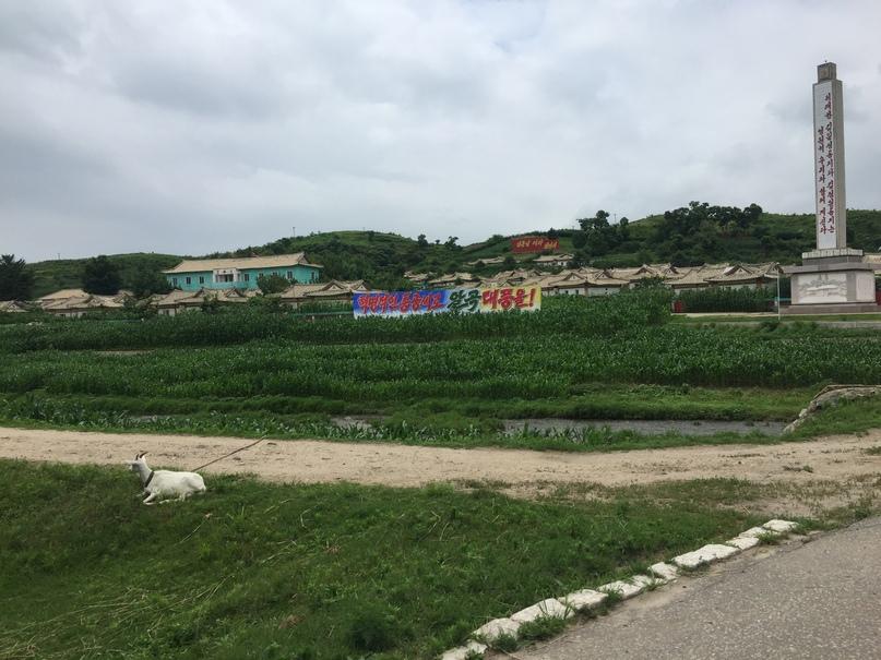 Отчет о путешествии в Северную Корею 2018. Стелла в деревне