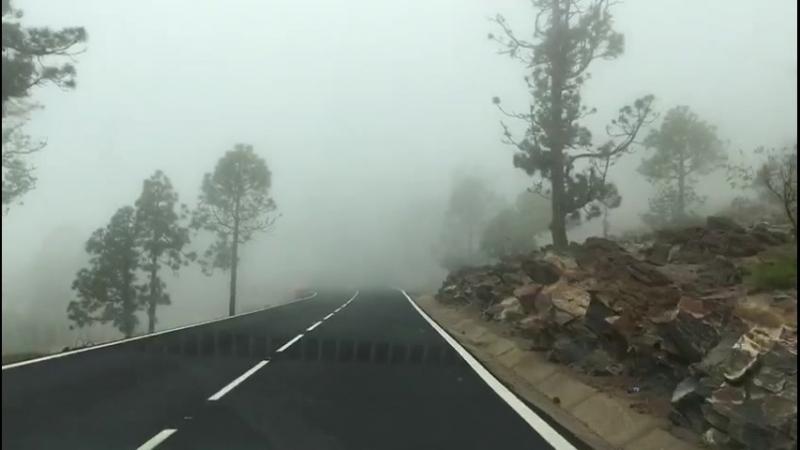 Горная дорога на Тенерифе. Туман.
