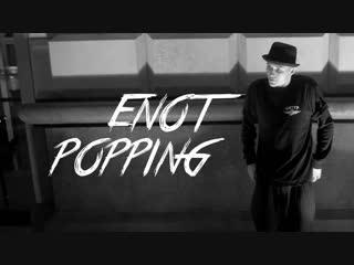 ENOT   SAINT-P. NIGHT POPPING
