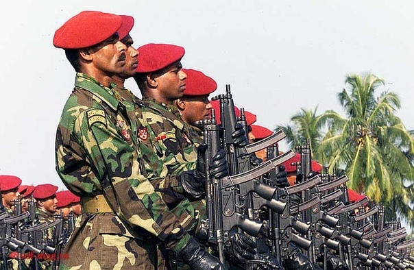 коммандос шри-ланки нашивка коммандос шри-ланки шриланкийские специальные воздушно-десантные части зародились в 1977 году, когда один из лучших армейских офицеров прошел подготовку на курсах