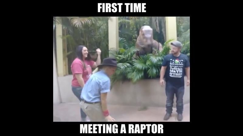 Dont Turn Your Back On A Raptor! Wait for it. 🦕 🦕 🦕🦕🦕