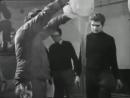 Hermann Nitsch Orgia Mistério 1969