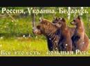 Леонид Корнилов Сеча