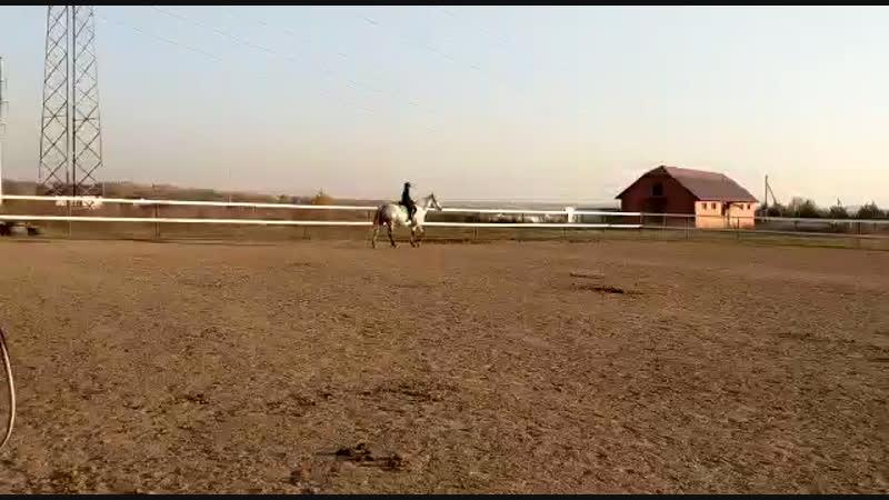 Я на лошади 🐴🐴🐴🐴🐴🐴🐴🐴🐴🐴🐴🐴🐴🐴