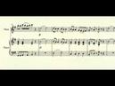 Eine Kleine Nachtmusik (1st Movt) - W. A. Mozart - for flute and piano