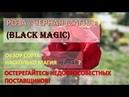 Роза Черная Магия Black Magic насколько магия черная / Обзор сорта / Плохие поставщики