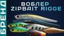 Воблеры ZipBaits Rigge брендовый обзор Универсальная приманка на хищника