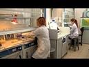 Люди в белом специалисты лаборатории войск РХБЗ могут обезвредить любое биологическое оружие