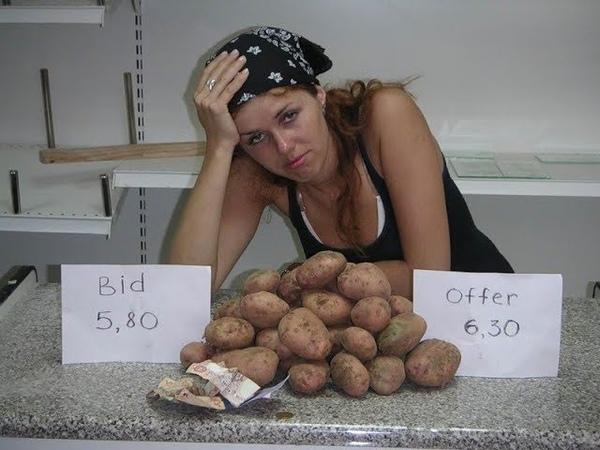 Депутаты запретили россиянам сажать картошку