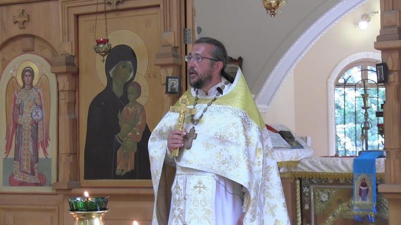 Как очищать око души своей. Священник Игорь Сильченков
