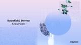 Budakid &amp Sterioa - Anesthesia (Original Mix)