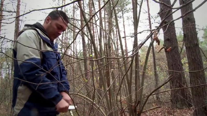 Как быстро построить шалаш в лесу