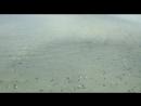 Краснодарский край Брюховецкий район село Новое ⠀ Местный предприниматель перерыл дамбу для спуска воды на свой водоём При