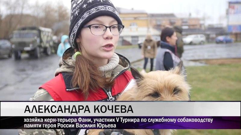 В Нижнем Тагиле состоялся V Турнир по служебному собаководству памяти героя России Василия Юрьева
