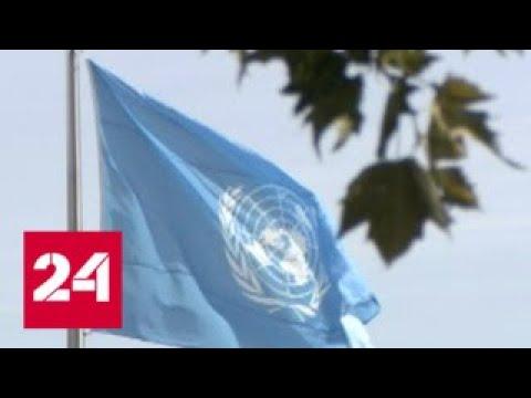 Российские дипломаты ответили на оскорбительный выпад Никки Хейли - Россия 24