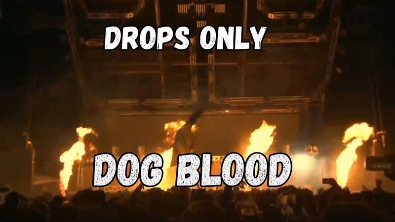 DROPS ONLY l Dog Blood (Skrillex Boys Noize) @ Ultra Miami 2019